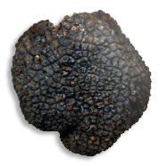 les truffes de la cabane